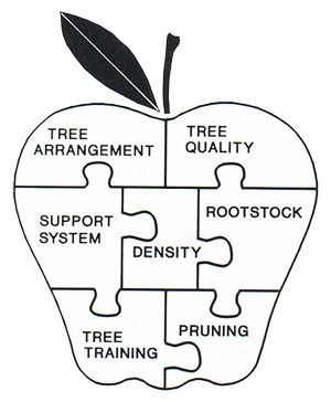 Orchard System Puzzle