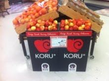 KORU® Plumac c.v. in New York Market