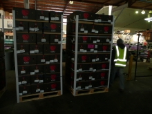 KORU® Plumac c.v. Pallets of boxes ready for shipment