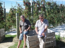Andy and Fred Thomas, New Zealand grower