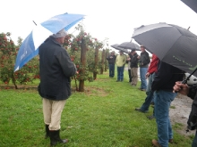 Group of USA Growers at Tony Gilbertson orchard