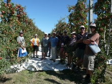 New Zealand Growers @ Wairepo Orchards