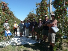 Attendees @ Wairepo Orchards Field Days 2013