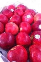 Apple-Gilmac2 700x467